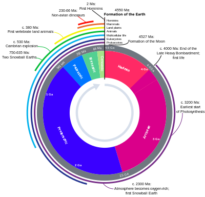 Circular representation of the geologic time scale.